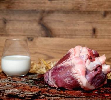 Herz vom Rinder Jahrling